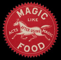 Magic Food