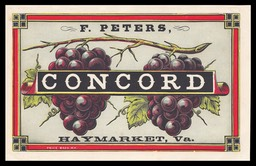 F. Peters Vineyard / Concord (grapes)