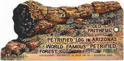 Petrified Forest (Arizona)