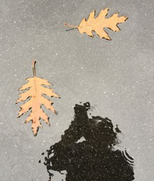 SelfPortraitWithLeaves150