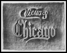 Views Of Chicago